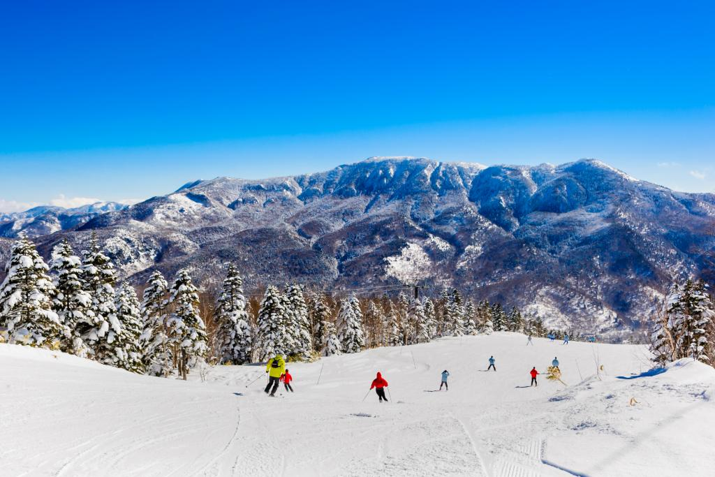 Shia Kogen Skiing