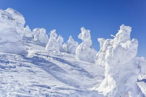 Snow Monsters at Mount Zao/shutterstock_weniliou-min